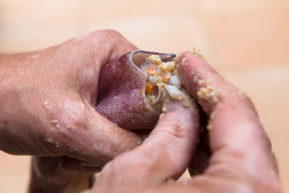Die Produktion des toten Meeres die Schuppenflechte